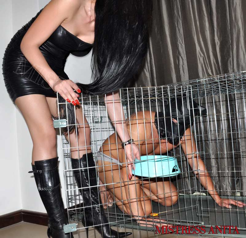 Dubai Mistress Anita wearing a strapless short leather dress is placing a doggy bowl in the dog cage where her slave, wearing a doggy mask, is locked up.